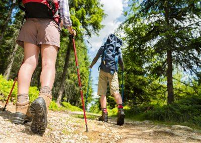 nordic-walking_im_bayerischen_wald