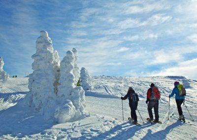 winter_am_grossen_arber_im_bayerischen_wald