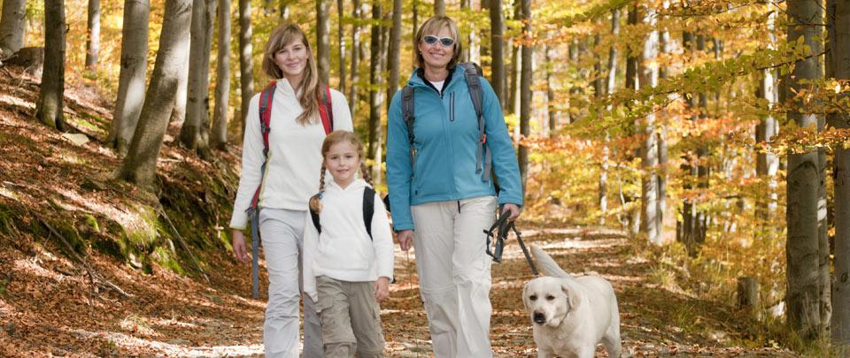 Ferien mit Hund in der Region Bayerischer Wald