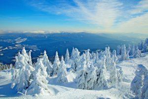 Winterlandschaft und bayerische Bergwelt