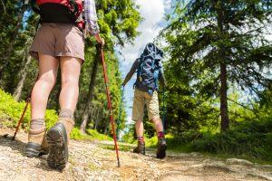 Panorama Landgasthof Ranzinger Bayerischer Wald | Nordic Walking im Bayerischen Wald