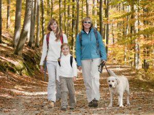 Panorama Landgasthof Ranzinger Bayerischer Wald | Urlaub mit Hund und Familie groß